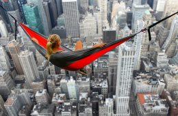 hammock-2036336_640 (1)