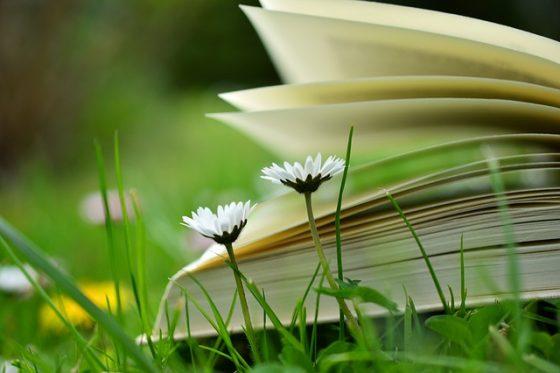 book-2304388_640
