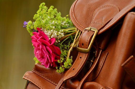 backpack-1482611_640